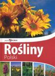 Rośliny Polski. Piękna Polska w sklepie internetowym Booknet.net.pl