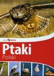Piękna Polska Ptaki Polski w sklepie internetowym Booknet.net.pl
