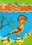Ptaki Malowanki dla dzieci od lat 2 w sklepie internetowym Booknet.net.pl