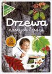 Drzewa naszych lasów część 2 Poznaję i rysuję w sklepie internetowym Booknet.net.pl