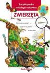 Encyklopedia młodego odkrywcy Zwierzęta w sklepie internetowym Booknet.net.pl