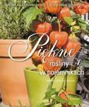 Piękne rośliny w pojemnikach w sklepie internetowym Booknet.net.pl