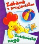 Zabawy z przyjaciółmi Zwichnięta noga w sklepie internetowym Booknet.net.pl