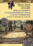 Odkrycia skarbów wczesnośredniowiecznych z terenu Wielkopolski w sklepie internetowym Booknet.net.pl