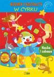 Akademia przedszkolaka. Kolory i kształty w sklepie internetowym Booknet.net.pl