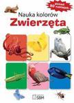 Nauka kolorów Zwierzęta w sklepie internetowym Booknet.net.pl