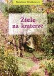 Ziele na kraterze w sklepie internetowym Booknet.net.pl