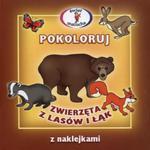 Pokoloruj zwierzęta z lasów i łąk w sklepie internetowym Booknet.net.pl