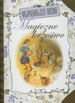 Najpiękniejsze baśnie Magiczne krzesiwo w sklepie internetowym Booknet.net.pl