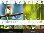 Atlas owadów i ptaków polskich. PAKIET w sklepie internetowym Booknet.net.pl