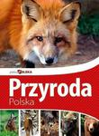 Przyroda polska. Piękna Polska w sklepie internetowym Booknet.net.pl