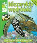 Niezwykłe wędrówki w sklepie internetowym Booknet.net.pl