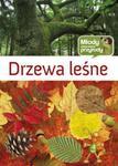 Drzewa leśne w sklepie internetowym Booknet.net.pl