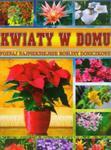 Kwiaty w domu w sklepie internetowym Booknet.net.pl