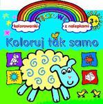 Koloruj tak samo. Tęczowe kolorowanki z nalepkami (3+) w sklepie internetowym Booknet.net.pl