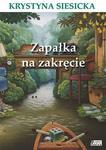 Zapałka na zakręcie w sklepie internetowym Booknet.net.pl