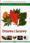 Drzewa i krzewy Atlas i klucz w sklepie internetowym Booknet.net.pl