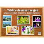 Tablice demonstracyjne dla nauczycieli dzieci trzy- i czteroletnich w sklepie internetowym Booknet.net.pl