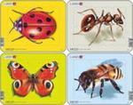 Owady Biedronka / Motyl / Mrówka / Pszczoła w sklepie internetowym Booknet.net.pl