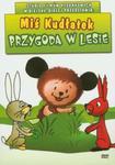 Miś Kudłatek Przygoda w lesie w sklepie internetowym Booknet.net.pl