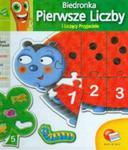 Karotka Biedronka Pierwsze liczby w sklepie internetowym Booknet.net.pl