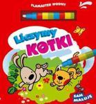 Liczymy kotki w sklepie internetowym Booknet.net.pl