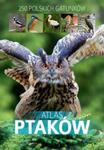 Atlas ptaków. 250 polskich gatunków w sklepie internetowym Booknet.net.pl