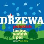 Drzewa polskich lasów sadów i pól w sklepie internetowym Booknet.net.pl