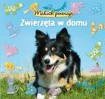 Maluch poznaje Zwierzęta w domu w sklepie internetowym Booknet.net.pl