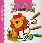 Dzikie zwierzęta Kolorowanka dla maluchów w sklepie internetowym Booknet.net.pl