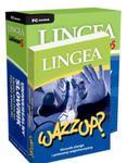 Wazzup słownik slangu i potocznej angielszczyzny z Lexiconem na CD w sklepie internetowym Booknet.net.pl