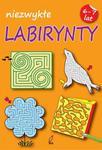 Niezwykłe labirynty 6-7 lat w sklepie internetowym Booknet.net.pl