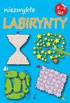Niezwykłe labirynty 8-9 lat w sklepie internetowym Booknet.net.pl