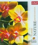 Puzzle 1000 Nature Orchidea w sklepie internetowym Booknet.net.pl