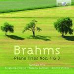 BRAHMS: PIANO TRIOS NOS. 1 & 3 w sklepie internetowym Booknet.net.pl