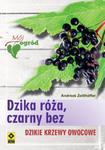 Dzika róża czarny bez w sklepie internetowym Booknet.net.pl