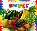 Owoce Moja pierwsza kolorowanka w sklepie internetowym Booknet.net.pl