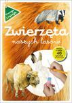 Zwierzęta naszych czasów. Poznaję i rysuję w sklepie internetowym Booknet.net.pl
