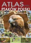 ATLAS PTAKÓW POLSKI OP. FENIX 9788377056592 w sklepie internetowym Booknet.net.pl