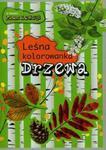 Leśna kolorowanka. Drzewa w sklepie internetowym Booknet.net.pl