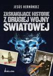Zaskakujące historie z drugiej wojny światowej w sklepie internetowym Booknet.net.pl