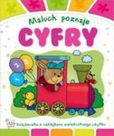 Maluch poznaje Cyfry w sklepie internetowym Booknet.net.pl