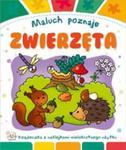 Maluch poznaje Zwierzęta w sklepie internetowym Booknet.net.pl