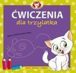 Ćwiczenia dla trzylatka z naklejkami. Akademia Kota Filemona w sklepie internetowym Booknet.net.pl