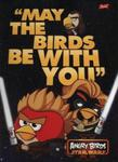 Teczka z gumką A4 Angry Birds Star Wars w sklepie internetowym Booknet.net.pl