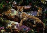 Puzzle 1000 Dumna matka Leoparda w sklepie internetowym Booknet.net.pl