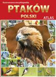 Ilustrowana encyklopedia ptaków Polski. Atlas w sklepie internetowym Booknet.net.pl