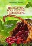 REUMATYZM BÓLE STAWÓW I KRĘGOSŁUPA w sklepie internetowym Booknet.net.pl