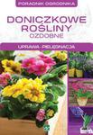 Doniczkowe rośliny ozdobne w sklepie internetowym Booknet.net.pl
