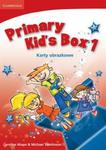 Primary Kid's Box Level 1 Flashcards Polish w sklepie internetowym Booknet.net.pl